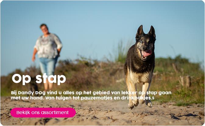 Met goed materiaal op stap met je hond!